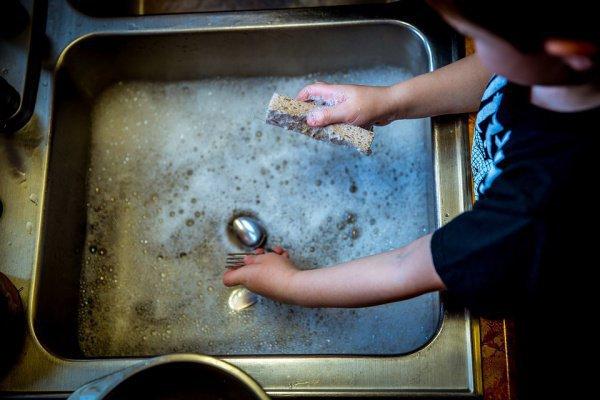 Американские ученые открыли новую потенциальную замену для антибиотиков, исследуя микрофлору обыкновенных кухонных губок