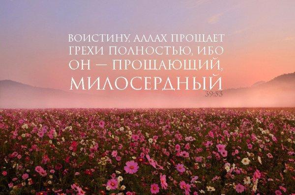 Знамения милости Всевышнего