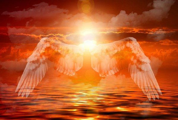 Ангелы-карубийун