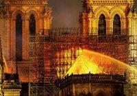 Пожар в Нотр-Даме может обернуться отставкой гендиректора ЮНЕСКО