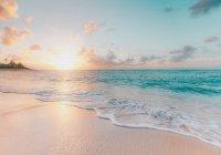 В США женщина умерла после посещения пляжа