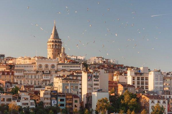 Задержанные заявили правоохранительным органам Турции, что их мужей убили в Сирии