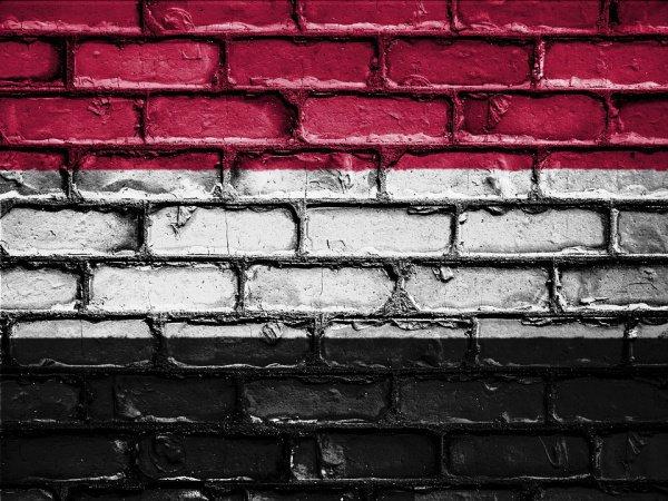 В Йемене зафиксировано 460 тыс. случаев заболевания холерой, включая порядка 200 тыс. детей (Фото: David Peterson/Pixabay)