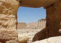 Армения сняла фильм о преступлениях ИГИЛ в Пальмире