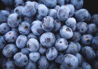 Перечислены самые полезные сезонные ягоды