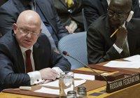 Постпред РФ при ООН рассказал, что мешало ликвидации ИГИЛ в Сирии