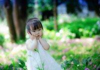 В Китае запустили детское мобильное приложение для интернет-поиска