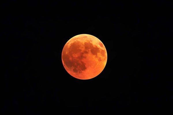 В 1990-х и начале 2000-х годов НАСА предпринимало попытки вернуться на Луну и высадиться на Красной планете (Фото: Angelo Caputo/Unsplash)