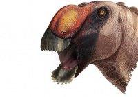 Найден новый вид динозавра с необычным клювом (ФОТО)