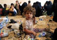 Ирак призвал страны мира активнее «разбирать» детей ИГИЛ