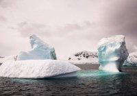 Ледники Антарктиды предложили засыпать искусственным снегом