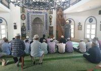 Пятничную проповедь в мечетях Узбекистана посвятили защите животных