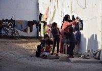 В Ливане остаются более полутора миллионов сирийских беженцев