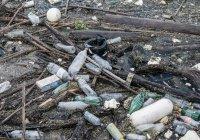 Музей мусора появится в России