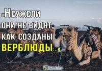Животное, которое является знамением Аллаха