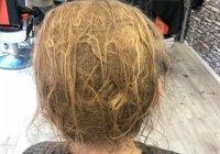В Уэльсе подросток, не стригшийся 10 лет, потряс парикмахера