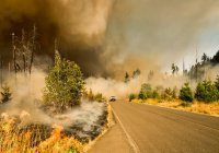 Лесные пожары в Сибири запечатлели из космоса