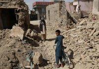 ООН: войска НАТО убили больше афганцев, чем ИГИЛ и «Талибан»
