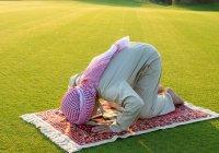 Что дает человеку религия Ислам?