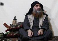 Иракская разведка: главарь ИГИЛ парализован и скрывается в Сирии