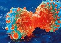 Обнаружен способ победить особо опасные виды рака