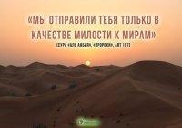 Знакомьтесь, Пророк Мухаммад (мир ему)