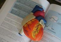 Создан девайс для выявления недугов сердца