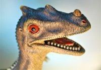 Палеонтологи обнаружили в Техасе странного динозавра