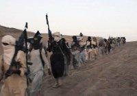 Пентагон назвал численность боевиков ИГИЛ в Сирии и Ираке