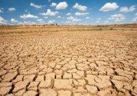 Евросоюз выделил Африке €50 млн на борьбу с последствиями засухи