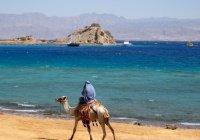 Туристов предупредили о вспышке кишечной инфекции в Египте