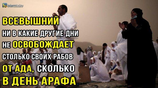 Достоинства дня Арафа (Фото: REUTERS/Ahmad Masood)