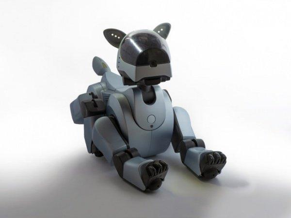 Роботы Laikago названы так в честь первой собаки-космонавта по кличке Лайка