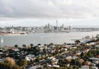 В Новой Зеландии сдали тысячи единиц оружия после терактов в мечети