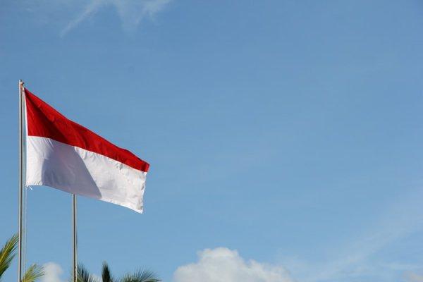 Индонезия имеет социально-политические, исторические и экономические отношения с Пакистаном и Индией