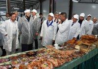 Минниханов посетил комплекс, сертифицированный Комитетом по стандарту халяль ДУМ РТ