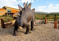 В Марокко нашли самого древнего в мире стегозавра