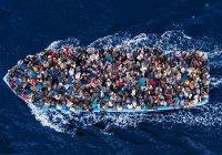 Всемирная исламская лига призывает ЕС помогать Италии с мигрантами