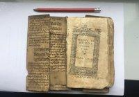 Известный ирландский медицинский трактат оказался... переводом работ Ибн Сины (ФОТО)