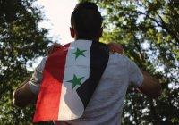 В парке Дамаска прошел городской фестиваль