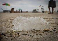 Ежегодно люди потребляют больше 250 г пластика с водой и пищей