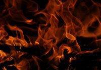 Лесные пожары в Амазонии запечатлели из космоса
