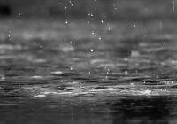Мощный дождь затопил Владивосток