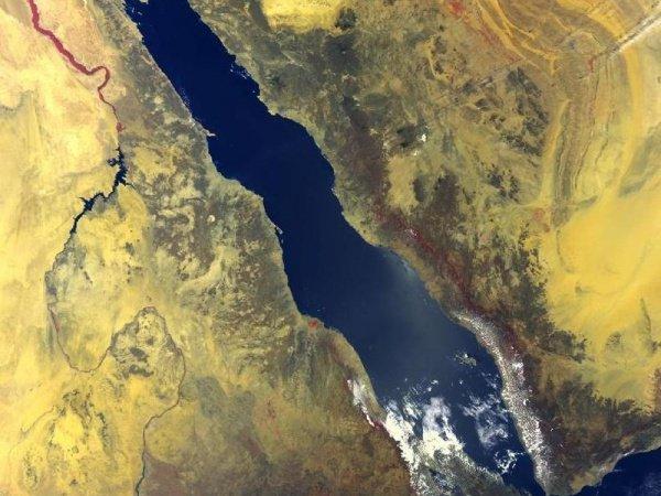 Угроза экологической катастрофы в Красном море