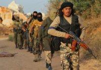 Российский дипломат назвал число боевиков ИГИЛ в Сирии и Ираке