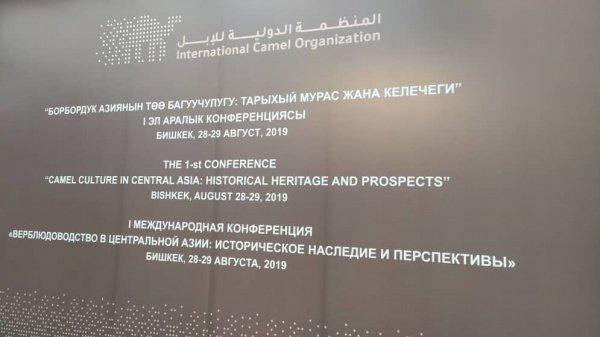В Бишкек съехались верблюдоводы из 15 стран.