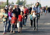 С начала войны в Сирию вернулись почти 1,5 миллиона беженцев