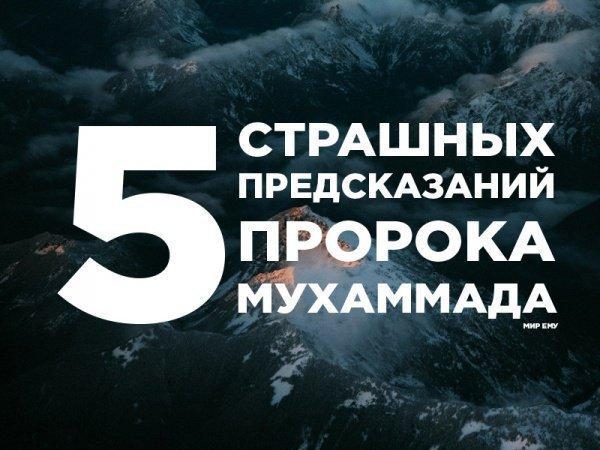5 страшных предсказаний Пророка (мир ему) о своих близких, ставших реальностью