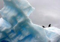 Озоновая дыра над Антарктидой рекордно уменьшилась