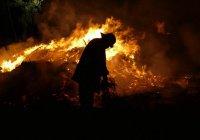 Певец Дима Билан стал пожарным (ВИДЕО)